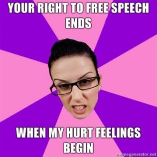 Your right to Free Speech