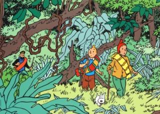 Tintin en la selva