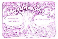 EUGENE TREE